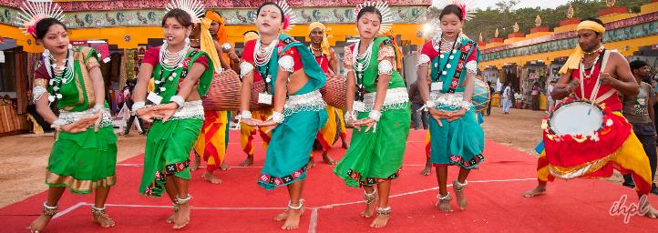 Orissa Tribal Festival, orissa
