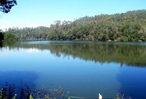 Berijam Lake Kodaikanal