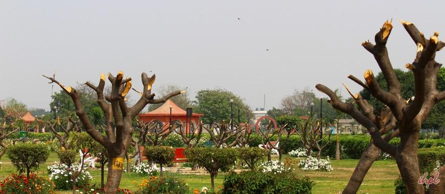 Japanese Garden Rohini Parks Gardens In Delhi