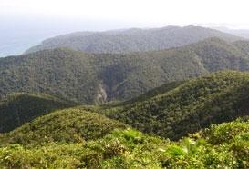 Saddle Peak in Andaman
