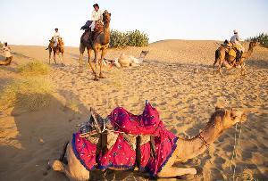 Sam Sand Dunes in jaisalmer