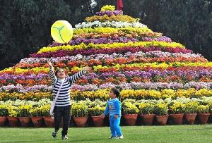 The Delhi Flower Show New Delhi