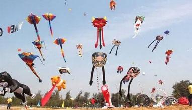Kite Flying Festival in Delhi