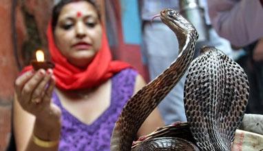 Nag Panchami Festival Bihar