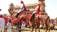 Camel festival in Bikaner, Rajasthan