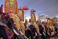 Paripally gajamela festival in Kerala