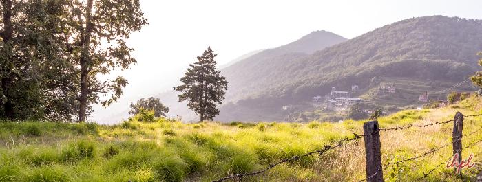 Pangot Village in Uttarakhand
