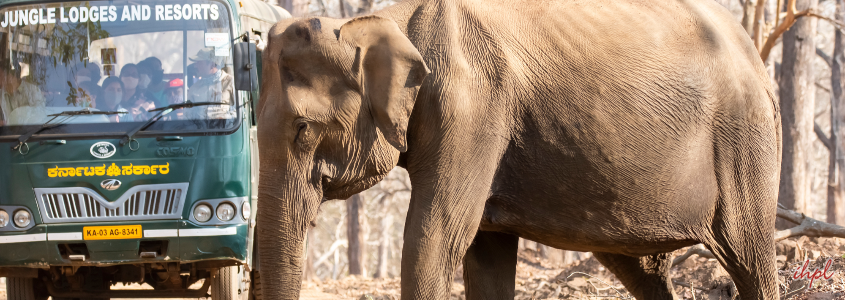 Kabini Backwaters, karnataka