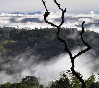 watarfall in coorg, karnataka