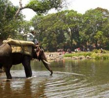 elephant safari in Banpukuria Deer Park