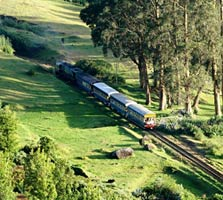 toy train in ooty