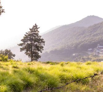 pangot lake in uttarakhand